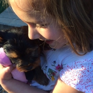 A pet for my child: Why caving in is good